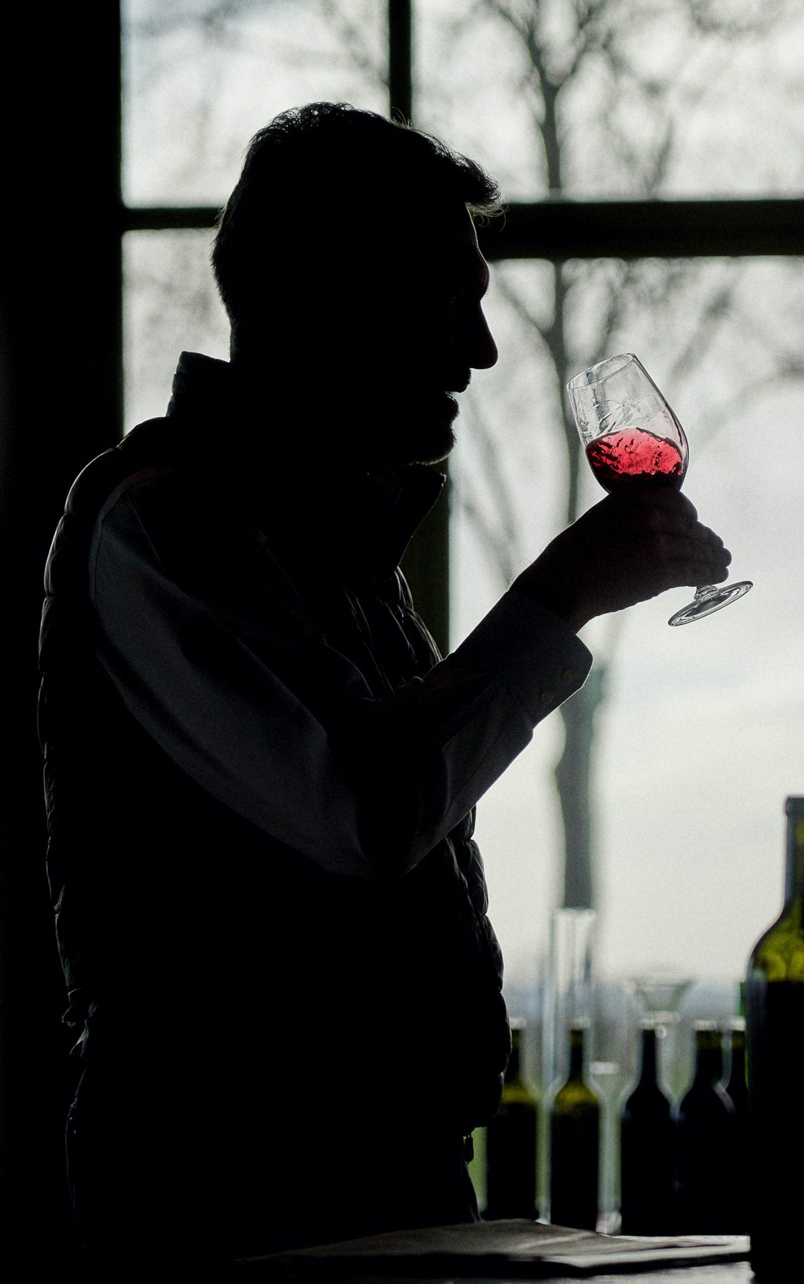 Pauillac vin caractéristique