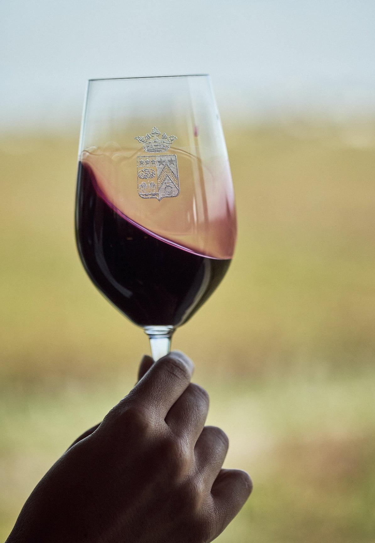 Œnologie Bordeaux